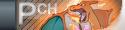 PokéCheats